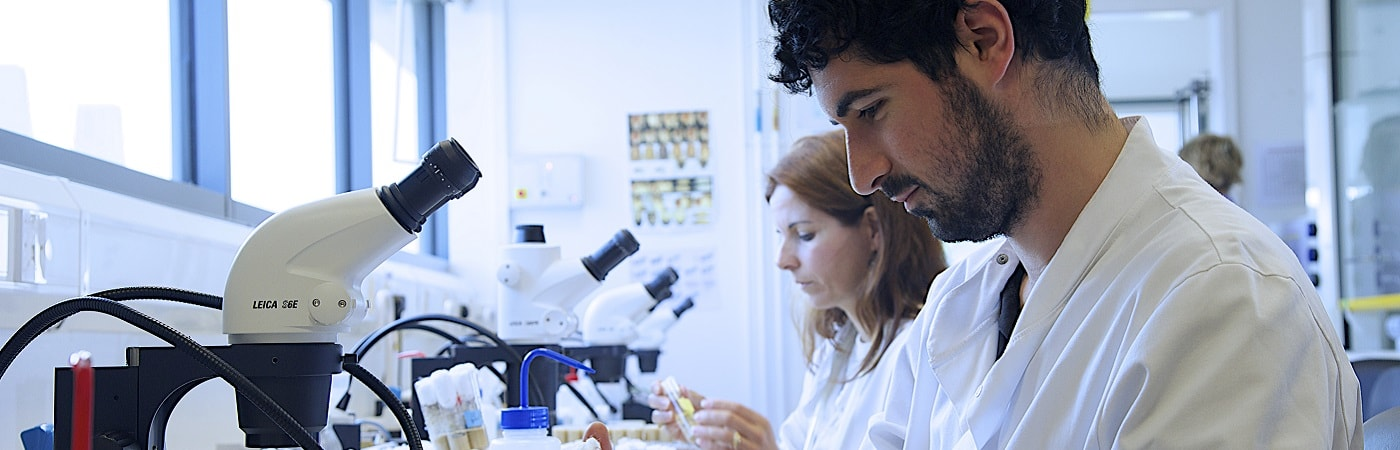 BSc Microbiology with Industrial/Professional Experience at The University of Manchester