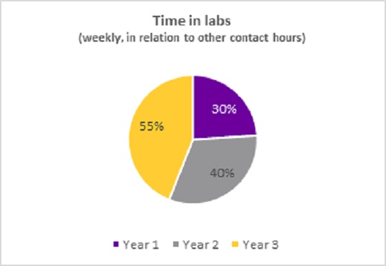 Time in labs