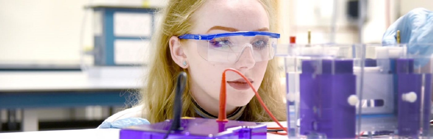 BSc Molecular Biology with Industrial/Professional Experience at The University of Manchester