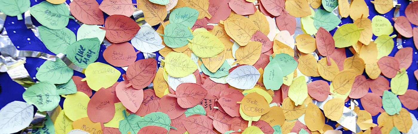 Children's names on a school art display of leaves