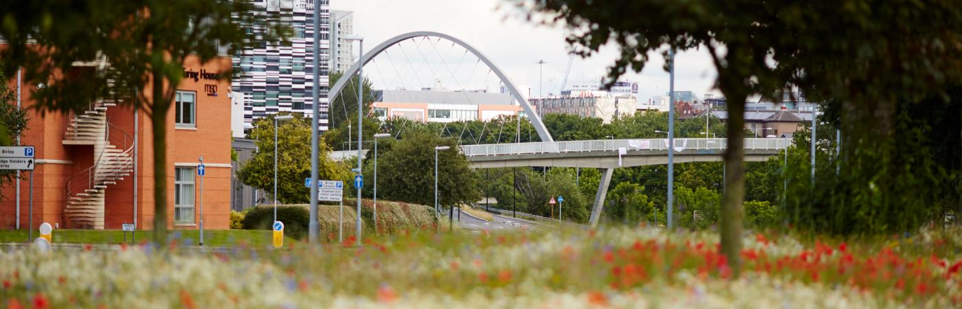 Hulme Arch and the Princess Parkway