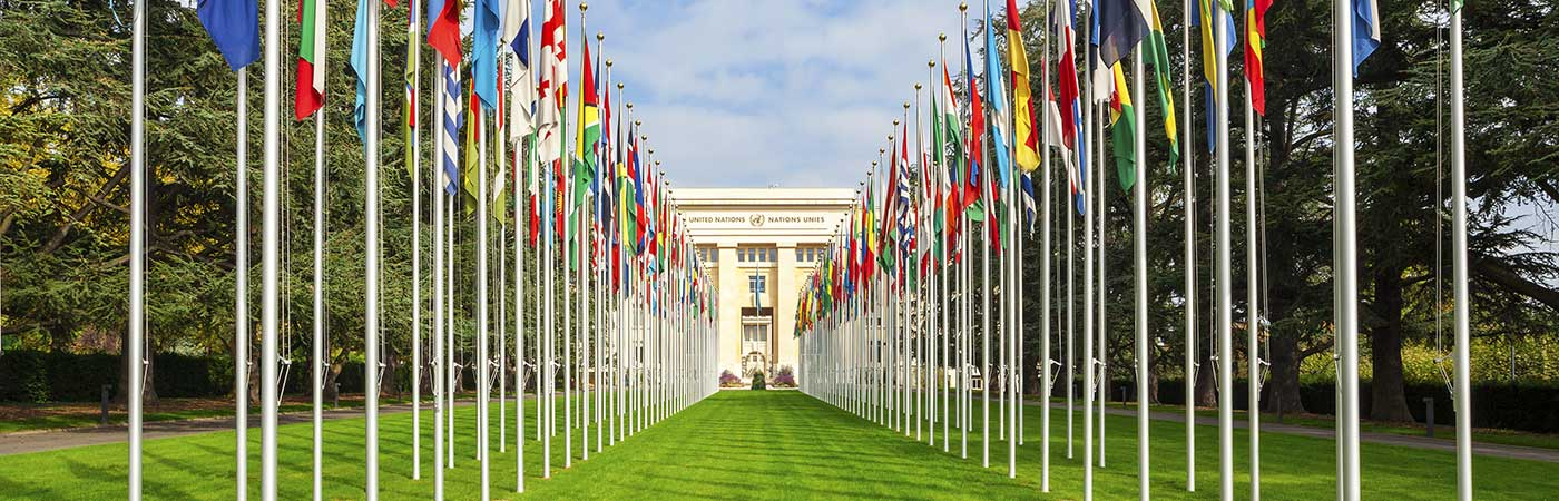avenue of flags at the United Nations